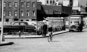 Jacobs bike
